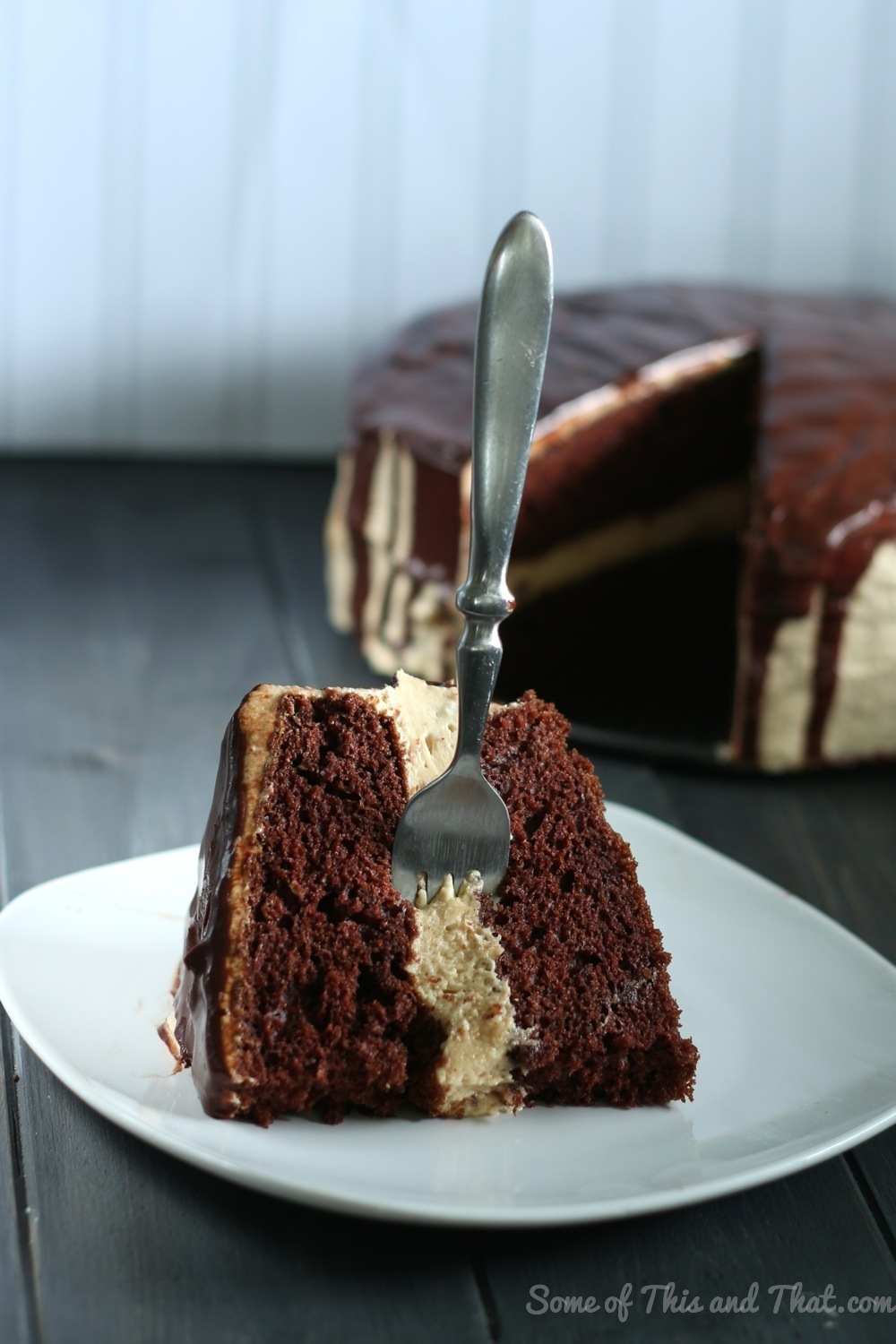 Chocolate Cake with Peanut Butter Cheesecake Filling!