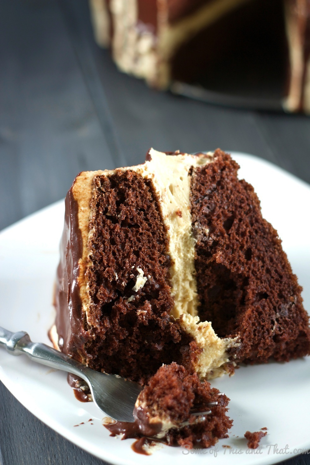 Chocolate Cake with Peanut Butter Cheesecake Filling ...