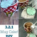 321 Mug Cake! Easy and Fun DIY Gift!