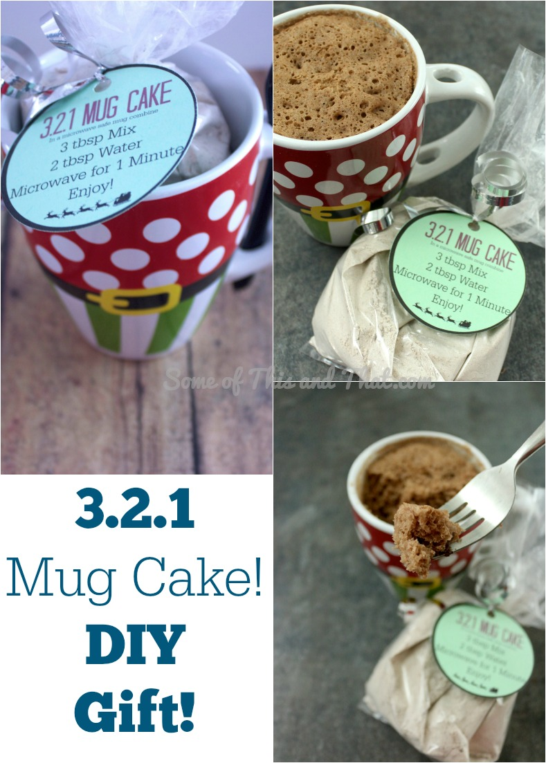 321 Mug Cake! DIY Gift!